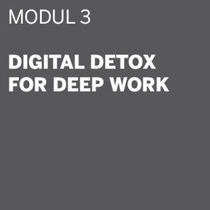 THE DIGITAL DETOX®   Seminar Modul 3: Digital Detox for Deep Work