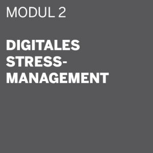 THE DIGITAL DETOX® | Seminar Modul 2: Digitales Stressmanagement